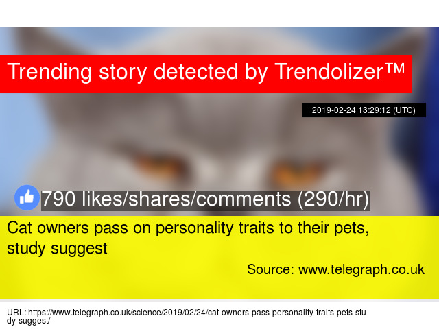 Cat owners pass on personality traits to their pets, study