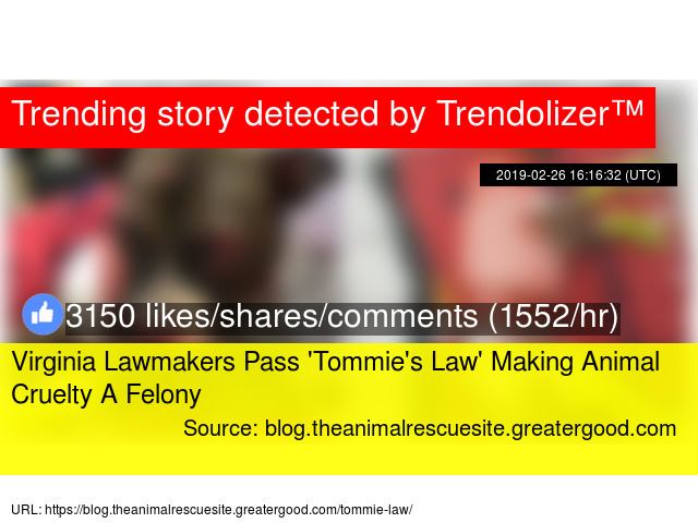 Virginia Lawmakers Pass 'Tommie's Law' Making Animal Cruelty