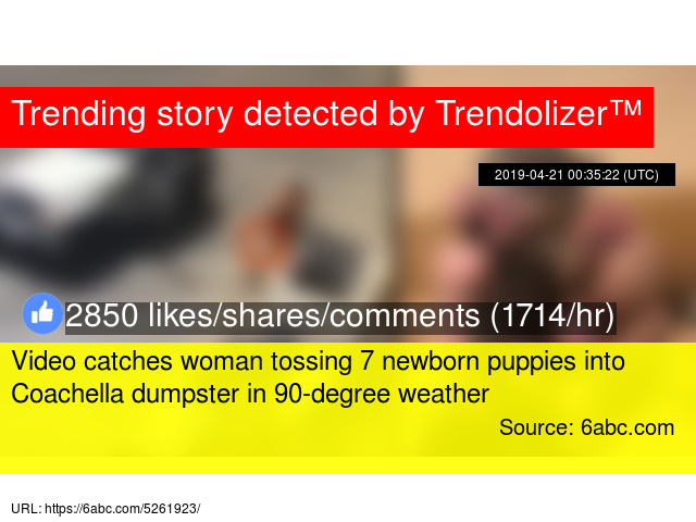 Video catches woman tossing 7 newborn puppies into Coachella