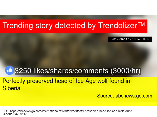 c364543a44 Perfectly preserved head of Ice Age wolf found in Siberia