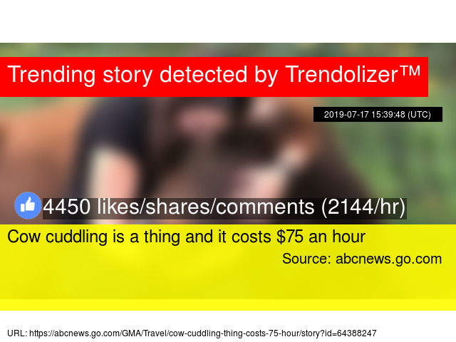 Cow cuddling is a thing and it costs $75 an hour