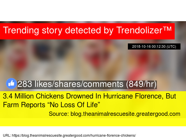 3 4 Million Chickens Drowned In Hurricane Florence, But Farm